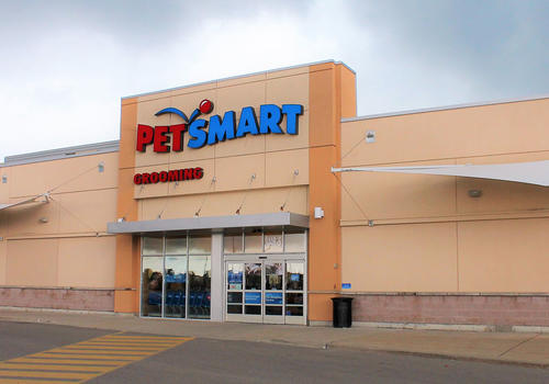 Pet Smart Whitby